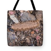 Twelve Scaled Worm Tote Bag