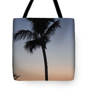 Twilight In Fort Myers Tote Bag