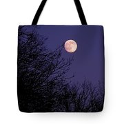 Twilight Moon Tote Bag by Rona Black