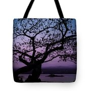 Twilight On Hilo Bay Hawaii Tote Bag
