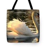 Twilight Swim Tote Bag