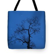 Twilight  Tracery  Tote Bag