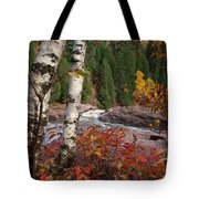 Twin Aspens Tote Bag by James Peterson