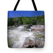 Twin Falls Austin Tote Bag