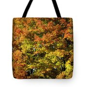 Twin Maples Tote Bag