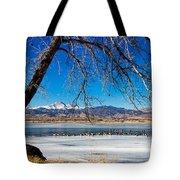Twin Peaks Blue Tote Bag