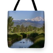 Twin Peaks View Tote Bag by James BO  Insogna