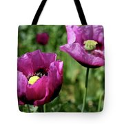 Twin Poppies Tote Bag