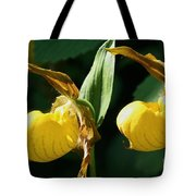 Twin Slippers Tote Bag