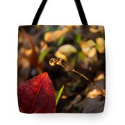 Twin Spotted Wintergreen Pods Tote Bag