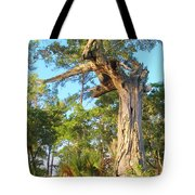 Twirling Tree Path Tote Bag