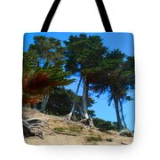 Twisted Cypress  Tote Bag