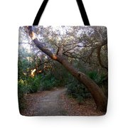 Twisted Oaks 2 Tote Bag