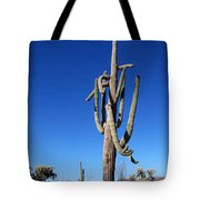 Twisted Sentinal Tote Bag