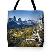 Twisted Tree And Trail Tote Bag