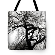 Twisted Tree In Black And White Tote Bag