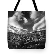 Twisted Trees And Clouds Tote Bag