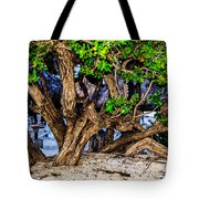 Twisted Trunks Tote Bag