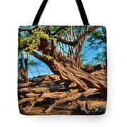 Twisting Trees Tote Bag