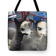 Two Alpacas Tote Bag