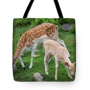 Two Babes Tote Bag