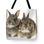 Two Baby Bunny Rabbits Tote Bag