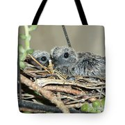 Two Baby Mourning Doves Tote Bag