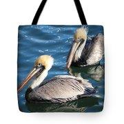 Two Beautiful Pelicans Tote Bag