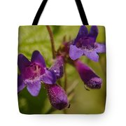 Two Beautiful Twins Tote Bag