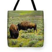 Two Bison Tote Bag
