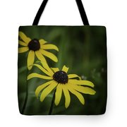 Two Black Eyes On The Macomb Orchard Trails Tote Bag