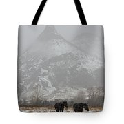 Two Black Horses In The Snow   #7983 Tote Bag