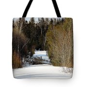 Two Blown Over Tote Bag