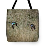 Two Blue Winged Teal Tote Bag