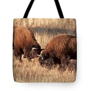 Two Bull Bison Facing Off In Yellowstone National Park Tote Bag