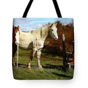 Two Children Admire Horses Tote Bag