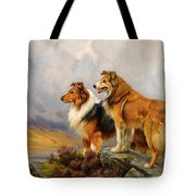 Two Collies Above A Lake Tote Bag
