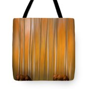 Two Colorado High Country Mystic Autumn Horses Tote Bag