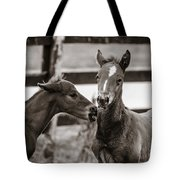 Two Colts Tote Bag