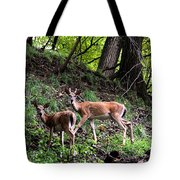 Two Deer Tote Bag