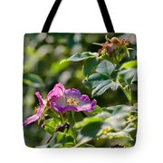 Two Dogroses Summer 2014 Tote Bag