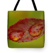 Two Droplets On A Leaf  Tote Bag
