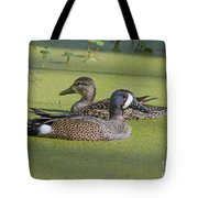 Two Ducks Passing By Tote Bag