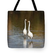 Two Egrets In The Pond Tote Bag