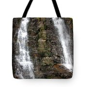 Two Falls Tote Bag by Garry Gay