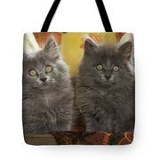 Two Fluffy Kittens Tote Bag