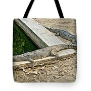 Two Gharial Crocodiles In Gharial Conservation Breeding Center In Chitwan Np-nepal   Tote Bag