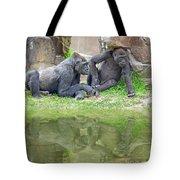Two Gorillas Relaxing II Tote Bag