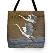 Two Greater Egrets  Tote Bag