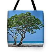 Two Heliotrope Trees On Tropical Beach Art Prints Tote Bag